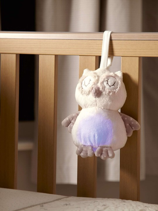The Sleepy Heads - Owl image number 5