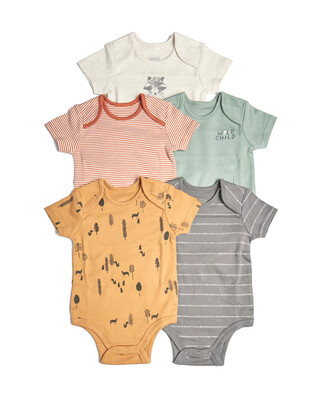 5 Pack of  Mixed Boys Bodysuits